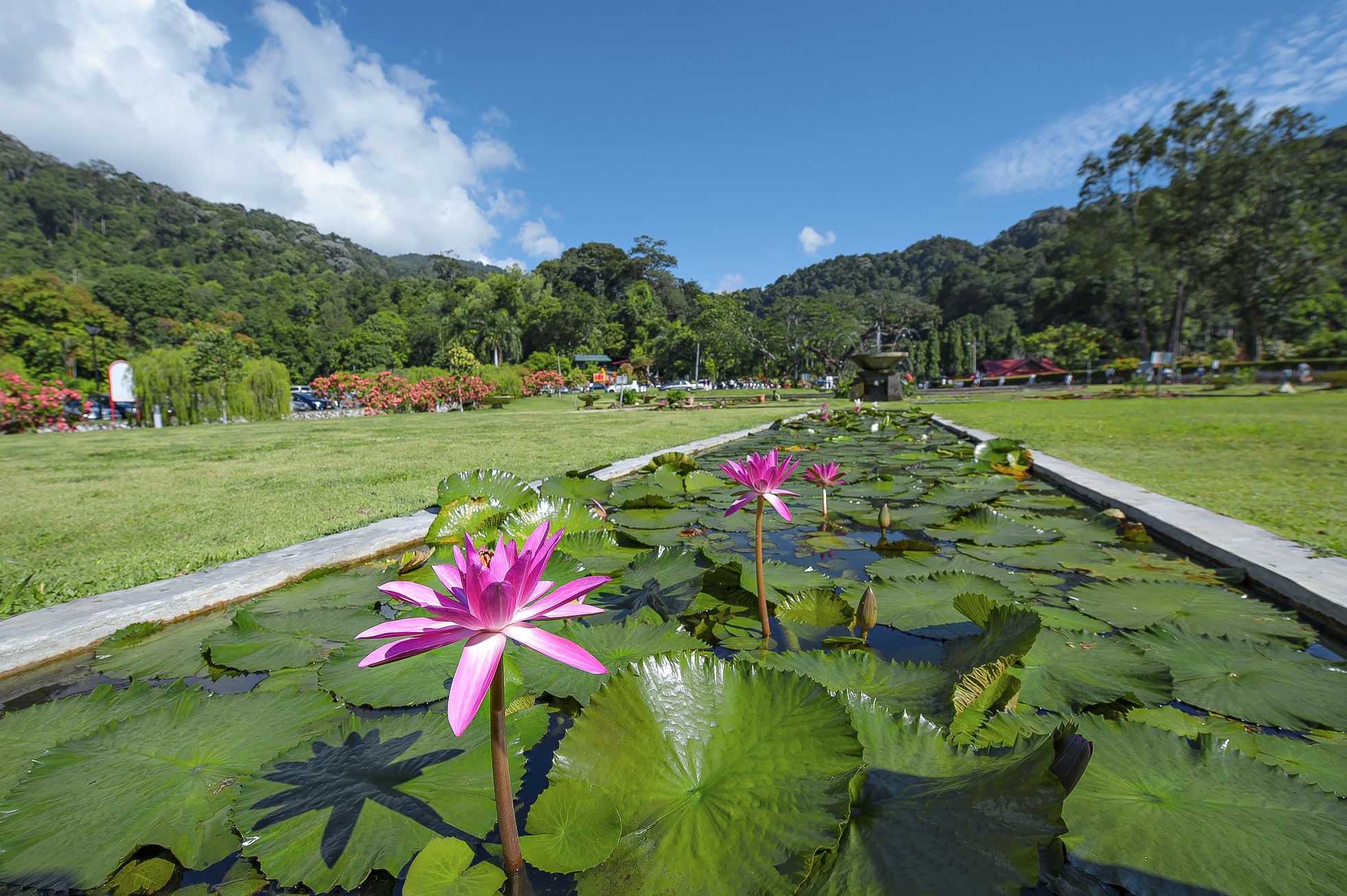penanggetaway: a trip to botanical gardens, penang's very own